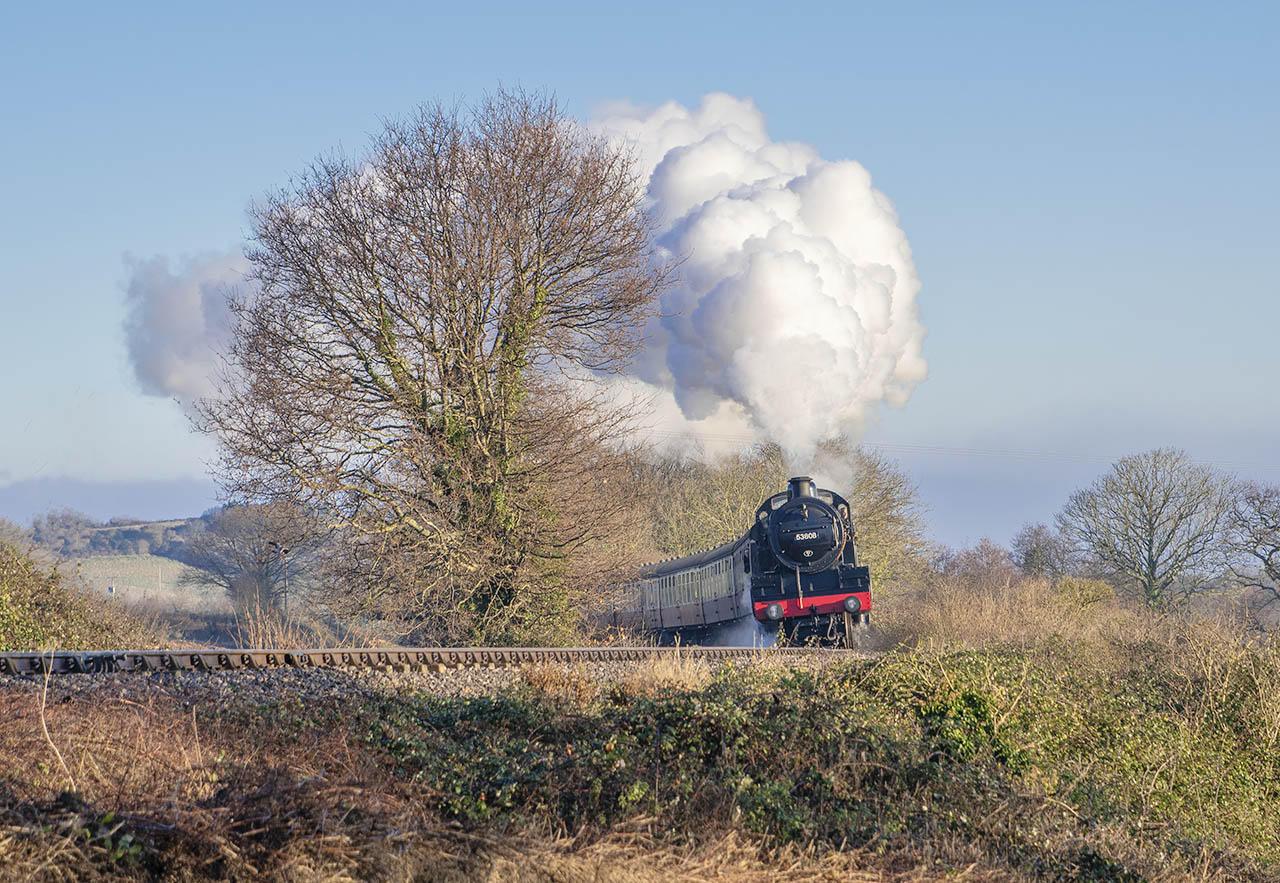 SDJR 2-8-0 no 53808 climbs towards Washford at the Playing Field on 30 December 2019.  © Alan Turner